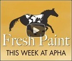 My APHA | Horses and Riding | Scoop.it