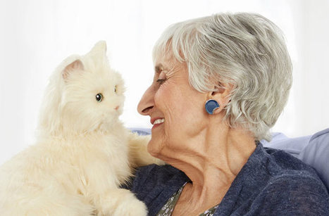 Robotic Cats to Keep Seniors Company : DNews | 255 Automation | Scoop.it