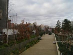 Regards croisés sur l'écologie urbaine | l'écologie en milieu urbain | Scoop.it