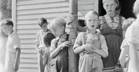 The Despair of Poor White Americans   STEAM   Scoop.it