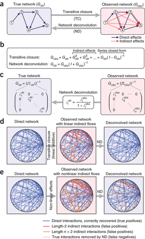 Network deconvolution as a general method to distinguish direct dependencies in networks | Simplifying Complexity | Scoop.it