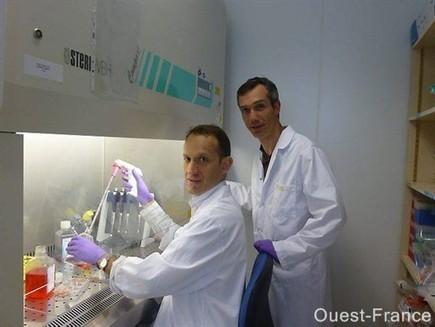 Cancer et pesticides : une découverte angevine - Angers.maville.com   Bio, Santé et Bien-être   Scoop.it