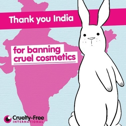 Cruelty Free Beauty | CSRlive.in (CSR, Sustainability News, Analysis & Connect in India) | Scoop.it