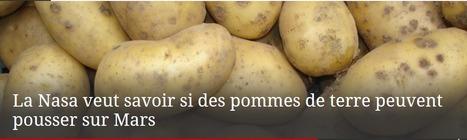 La Nasa veut savoir si des pommes de terre peuvent pousser sur Mars | Techniques de l'ingénieur | AGRONOMIE VEGETAL | Scoop.it