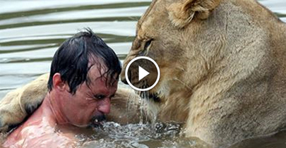 Man Attempts To Hug a Wild #Lion. What Happens Next Stunned Me. - #Video | The wonderful universe | Scoop.it