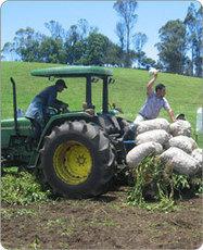 Sobre Agronet | Una introducción a la agroforestería | Scoop.it