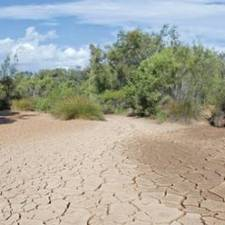Watershed Down - Phoenix Magazine | Weather Disasters | Scoop.it