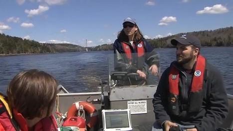 After Veazie Dam Removal, Agencies Monitor Penobscot River - WABI | Fish Habitat | Scoop.it