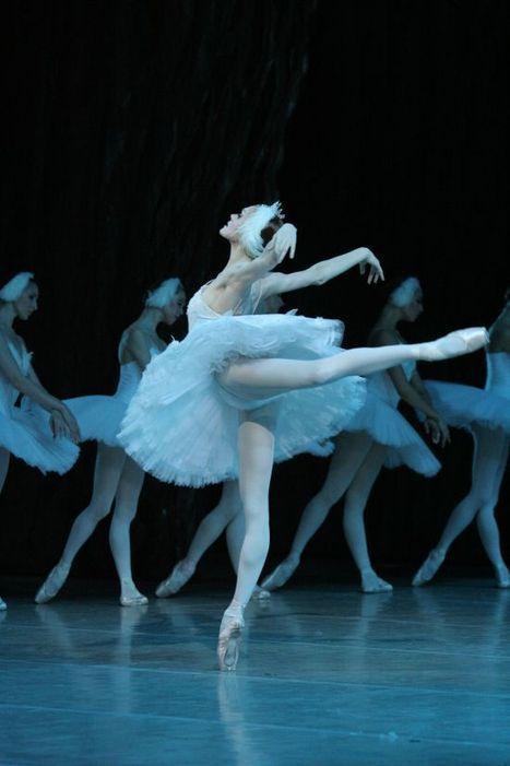 Danza Ballet Revista de Colección Nº5 a la venta! - Danza Ballet | reconmov | Scoop.it