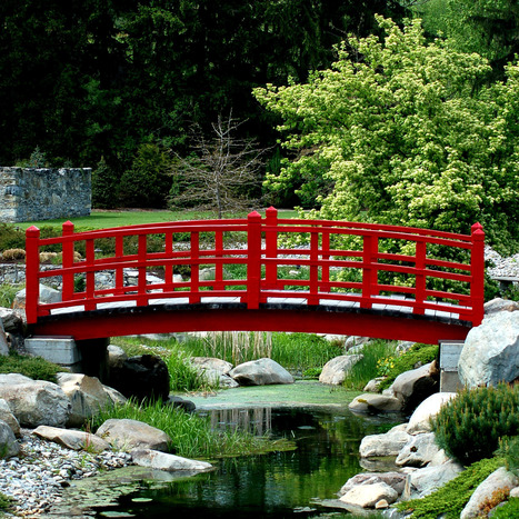 Picture of the Day: Japanese Garden With Mugo Pine | Japanese Gardens | Scoop.it