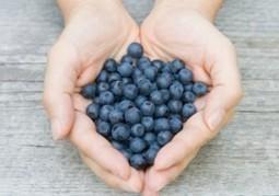 5 Best Foods For Healthy Veins | Healthcare Updates | Scoop.it