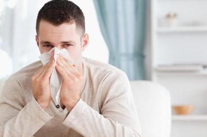 Dealing with the Asthma and Allergies of Guests   jeanette23si   Scoop.it