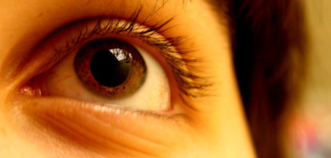 A clear, molecular view of the evolution of human color vision | Social Neuroscience Advances | Scoop.it