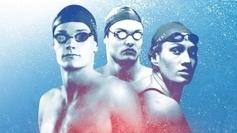 Les championnats de France de natation à guichets fermés à Rennes - France 3 Bretagne | L'équipe de France de natation | Scoop.it
