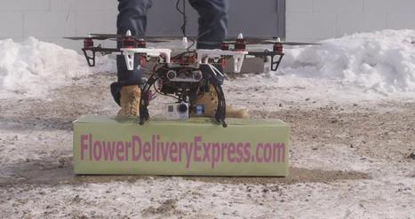 FAA Grounds Valentine's Flower Delivery Drone | Global Logistics Trends and News | Scoop.it