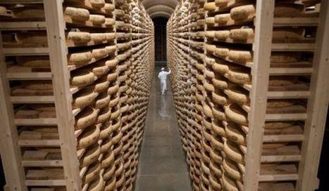 Tourisme industriel : découvrez les entreprises en images - Agro Media | Actualité de l'Industrie Agroalimentaire | agro-media.fr | Scoop.it