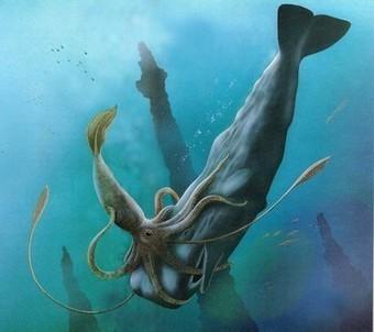 Did Ancient Sea Monster Turn Prey Into Art? | kthxbye | Scoop.it