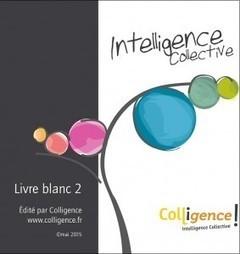 A lire : le Livre Blanc 2 de l'Intelligence Collective édité par Colligence ! | ImFusio | demain un nouveau monde !? vers l'intelligence collective des hommes et des organisations | Scoop.it