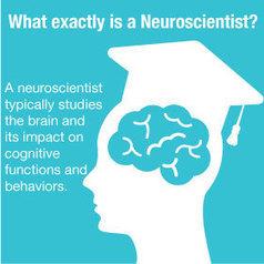 Neuroscience Graduate Programs & Neuroscience Graduate School | Graduate School | Scoop.it