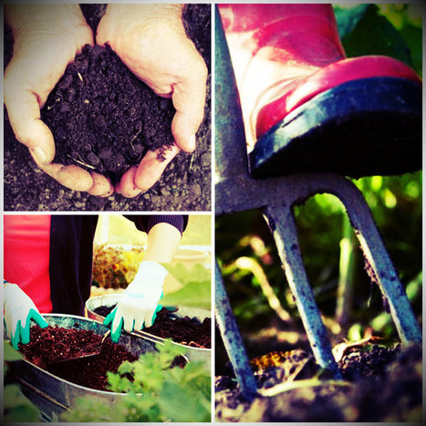 Organic Garden Soil: The Best Soil for Growing Plants | Home Improvement | Scoop.it