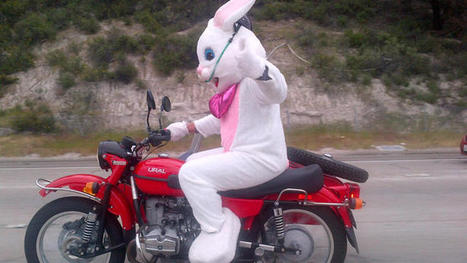 Motorcycling Easter Bunny Unmasked | Favorite think's | Scoop.it