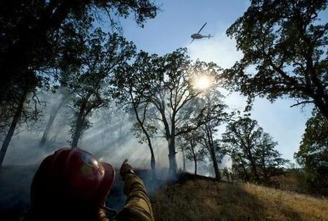 California braces as drought sparks early fire season | State News | FresnoBee.com | Sustain Our Earth | Scoop.it
