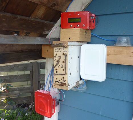 Arduino Blog – Monitoring Solitary Bees Using Open Technology   Peer2Politics   Scoop.it