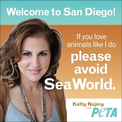 PETA, ACLU Sue Airport for Rejecting Kathy Najimy Anti-SeaWorld Ad | Science and Nature | Scoop.it