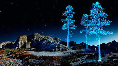 Stunning holographic trees by Kelly Richardson | D_sign | Scoop.it
