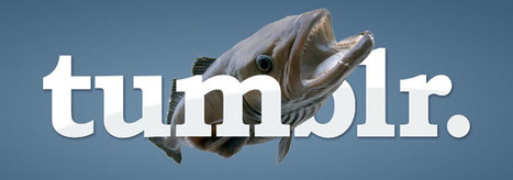 Tumblr Reels in Big Traffic, Now 8x More Page Views Than Wordpress.com | Digital Marketing & Communications | Scoop.it