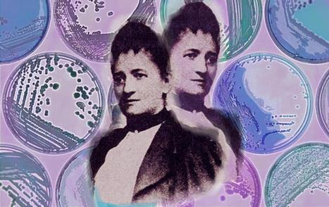 The Forgotten Woman Who Made Microbiology Possible - from her kitchen | Virology News | Scoop.it