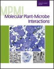 RNA silencing and plant viral diseases | Plant Genomics | Scoop.it
