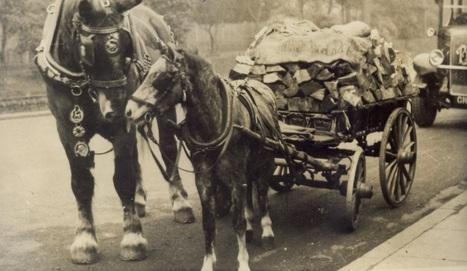 Memories of Jack the Trace-Horse | Wimbledon Property | Scoop.it