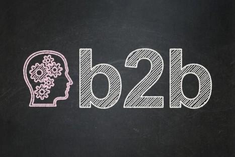 Etat des lieux des pratiques marketing en B2B | Comarketing-News | VEMD | Scoop.it