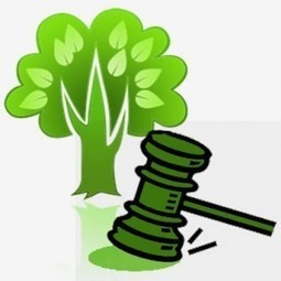 Legislação Ambiental PDF, Tudo sobre as novas leis Ambientais | melhores locais | Scoop.it