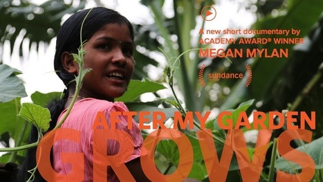 Here's how rooftop gardens can empower women and tame population growth | Sustain Our Earth | Scoop.it