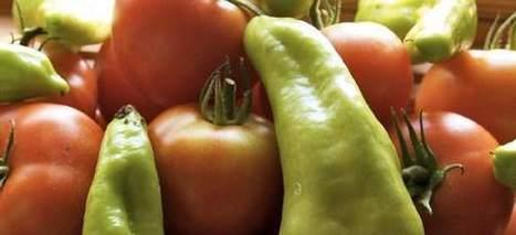 Los pimientos y tomates tienen nicotina, que podría proteger del desarrollo del párkinson   belleza   Scoop.it