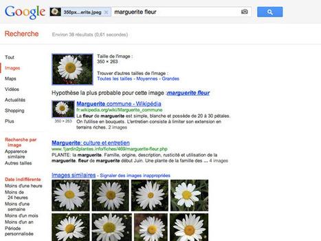 Google améliore sa recherche d'images | Geeks | Scoop.it
