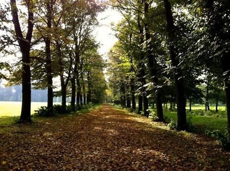 6 Ways to Enjoy Autumn in Italy | Italia Mia | Scoop.it