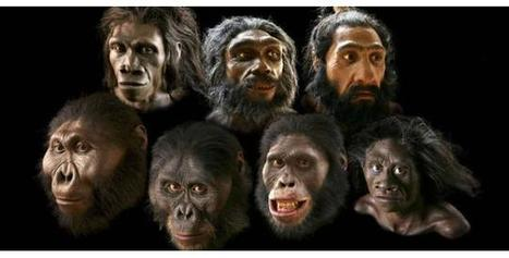 Reconstructions of Early Humans   Early Humans   Scoop.it