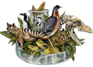 De-Extinction: If We Could Revive a Species, Does It Mean We Should?   EcoWatch   Scoop.it