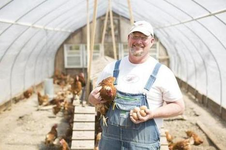 These chickens have a stress-free life — and a humane death. Yes, you can taste the difference. - The Boston Globe | enjoy yourself | Scoop.it