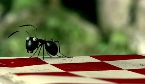 Minuscule La vallée des fourmis : un film d'animation 100% français | Les Fourmis de Bernard Werber | Scoop.it