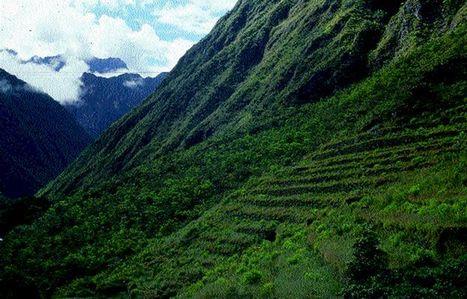 Choquesuysuy: el camino de la purificación en Cusco | Arqueologia del Peru | Kiosque du monde : Amériques | Scoop.it