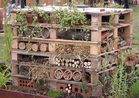 Insects Hostel made from repurposed pallets   Organic Gardening   Scoop.it