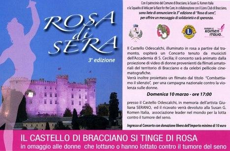 Rosa di sera: una sinergia tra luoghi della cultura, pubblica amministrazione, associazionismo e comunità civile.   Rosa di sera   Scoop.it