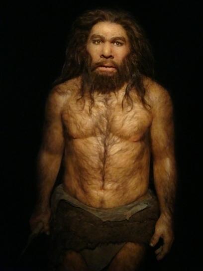 L'Homme de Néandertal espagnol aurait disparu bien plus tôt que prévu | Aux origines | Scoop.it