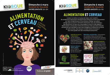 Kiosque-actu CNRS/Muséum du 6 mars : Alimentation et cerveau | Actualité des laboratoires du CNRS en Midi-Pyrénées | Scoop.it