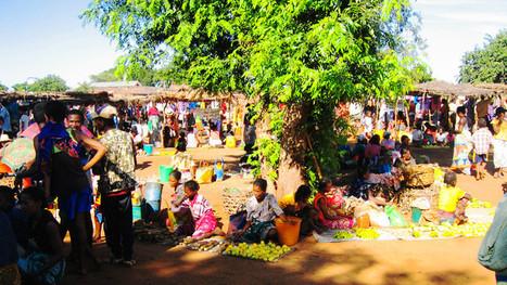 Madagascar : Un début de gouvernance plutôt satisfaisant | Akory! | Scoop.it