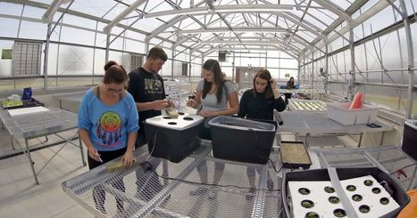 USA - Students put new agricultural buildings to use | Aquaponics in Action | Scoop.it